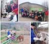 주간보호센터 미르농장 체험기